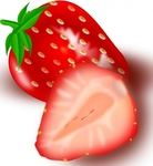 strawberry,media,clip art,public domain,image,png,svg,food,plant,fruit,capsuni,foeldiepper