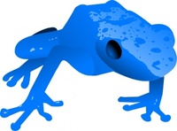 endangered,blue,poison,dart,frog