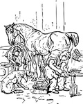 horse,shoeing,animal,dog,blacksmith,media,clip art,externalsource,public domain,image,png,svg