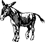 donkey,media,clip art,public domain,image,png,svg,animal,mammal