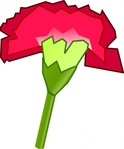 carnation,flower,cravo,nature,media,clip art,public domain,image,svg