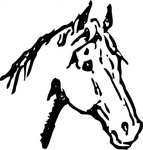 horse,head,animal,media,clip art,externalsource,public domain,image,png,svg