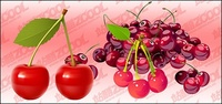 cherry,fine,material,fresh,berry,food,fruit,green,harvest,healthy,isolated,juicy,leaf,merry,nutrition,organic,red,ripe,two,vegetarian,vitamin,white