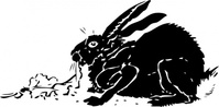 black,rabbit,animal,mammal,bunny,hare