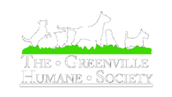 Greenville,Humane,Society