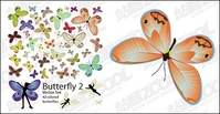 butterfly,material