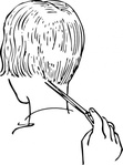woman,haircutting,hair,haircut,head,barber,barbering,line art