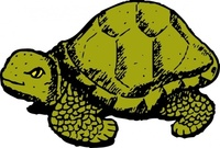 tortoise,media,clip art,externalsource,public domain,image,png,svg,animal,reptile,turtle,uspto