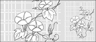 line,drawing,flower,morning,glory,lattice,background