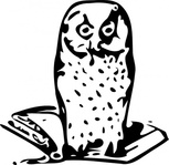 book,icon,animal,bird,bird of prey,owl,alegory,knowledge,wisdom,learning,black & white,line art