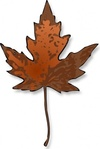 maple,leaf,color,plant,nature,canada,fall,photorealistic