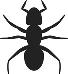 ant,bug,animal,insect,flat,poster,solid,no contour,monochrome,black,silhouette