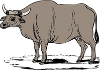 gaur,media,clip art,public domain,image,png,svg,animal,mammal,gayal,bos gaurnus
