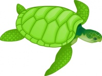 green,turtle,media,clip art,editorial pick,how i did it,public domain,image,png,svg,animal,reptile,ocean,sea creature