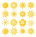 flower,sun,sun flower,symbol,vector icon,yellow
