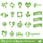 bee,concept,eco,ecology,element,flower,friendly,green,heart,insect,leaf,light,nature,organic,recycle