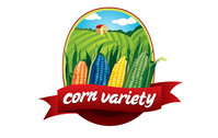 corn,nature,earth,organic,field,planting,agriculture,food,vegetable,fruit,sky,environment,variety,agricultural,color,green,wheat,logo,natural,color,vegetable,color,vegetable