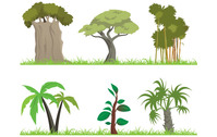 jungle,tree,forest,nature,leaf,grass,design element,cartoon,cartoonish,green
