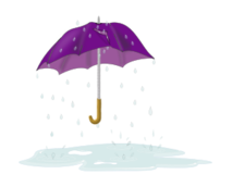 umbrella,drip,rain,puddle,splash,water,blue,purple,rip,tear,tattered,ripped,torn,storm accessory,outside,weather
