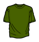 clothing,green,color,t-shirt