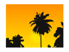 sunset,wallpaper,caribbean,beach,yellow,orange,coconut,tree,nature,svg wallpaper,silhouette