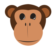 monkey,monkey face,jungle animal,monkey,monkey face,jungle animal