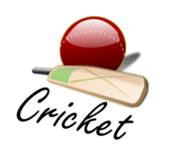 cricket,game,sport,team sport,ball,icon,bat,player,uk,british,britain