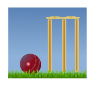 cricket,sports 2010,wicket,sport,british