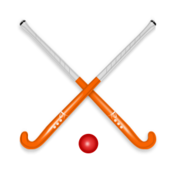 hockey,hockey stick,ball,sport,game