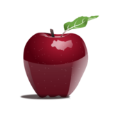 apple,realistic,color,red,fruit,food