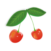 editorial pick,fruit,cartoon,cherry