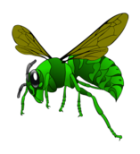 media,clip art,public domain,image,png,svg,green hornet,hornet,bee,cartoon,insect