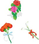 stalk,of,rose,ribbon