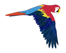 media,clip art,public domain,image,png,svg,animal,parrot,bird